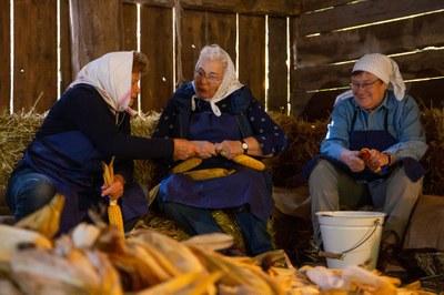 Der Blog des Weinviertler Museumsdorf Niedersulz wird für Sie künftig Vorder- und Hintergrundinformationen zum Museumsdorf zugänglich machen.
